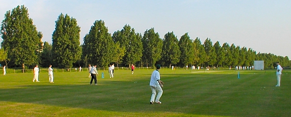 cricket on Woodford Green